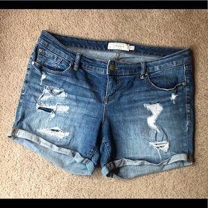 Torrid 14w Distressed Denim Shorts